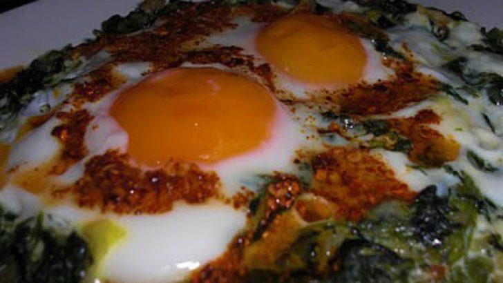 Yumurtalı Ispanak