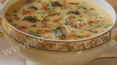 Mantarlı Tavuk Çorbası
