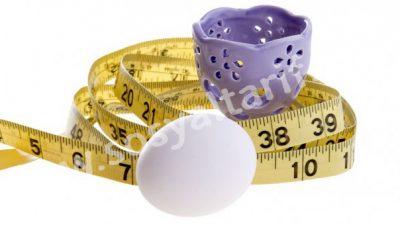 Yumurta Diyeti (2 Haftada 9 Kilo)