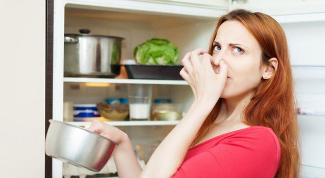 Buzdolabı Temizlemek