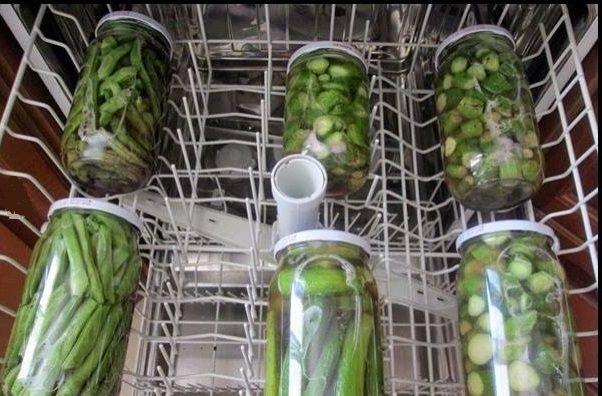 Bulaşık Makinesinde Turşu