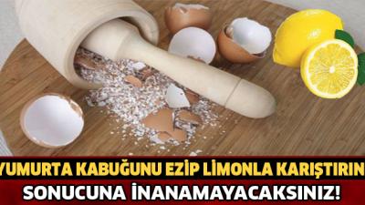 Yumurta Kabuğu Faydaları