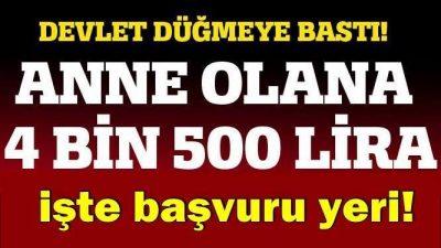 Devlet Anne Olana 4500 TL Verecek!