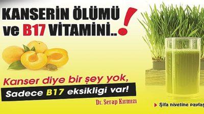 B17 Vitamini Kanserle Savaşıyor – B17 Vitamini Faydaları