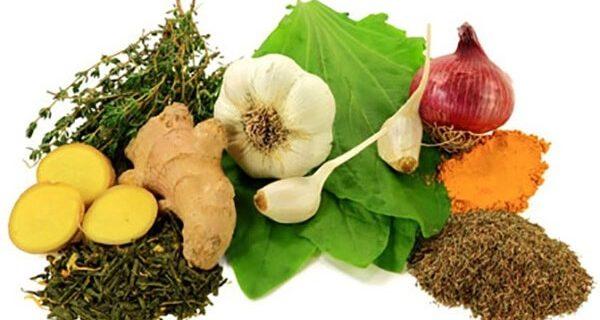 Doğal Antibiyotik Malzemeleri