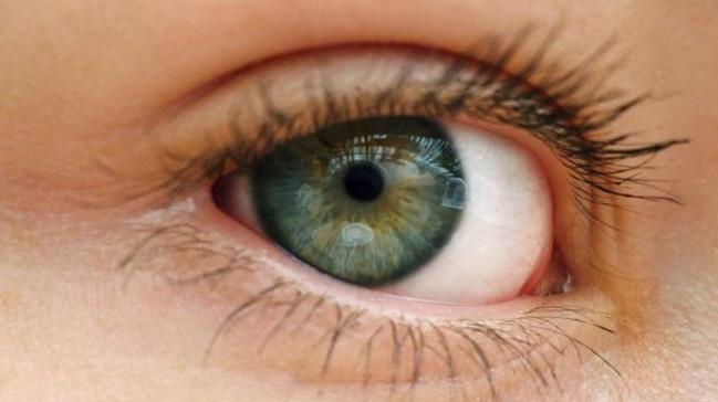 Retina Sağlığı