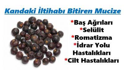 Kandaki İltihabı Yok Eden Doğa Üstü Meyve