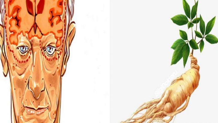 Alzheimer, Depresyon ve Kaygıya Karşı Kullanılan Bitki