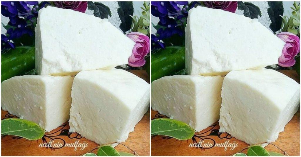 Evde Peynir Yapımı – Peynir Nasıl Yapılır?