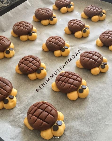 Kaplumbağa kurabiye yapımı