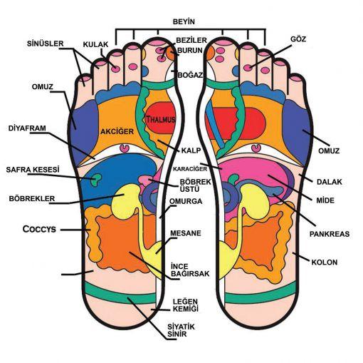 ayak tabanları sağlık