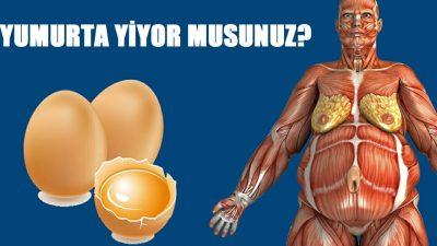 Doktor Günde İki Yumurta Yemesini Söyledi Vücudundaki Değişikliklere O Bile İnanamadı