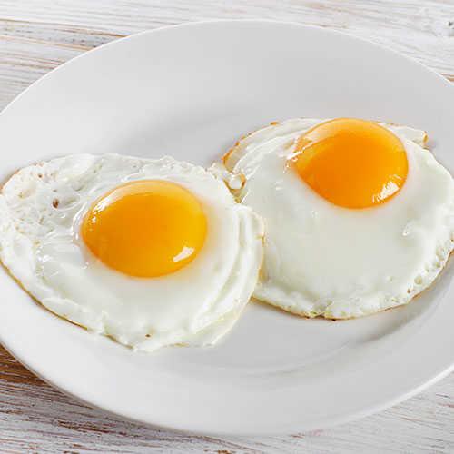 fosfor yumurta