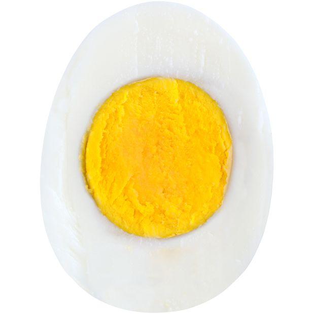 yumurta bağışıklık