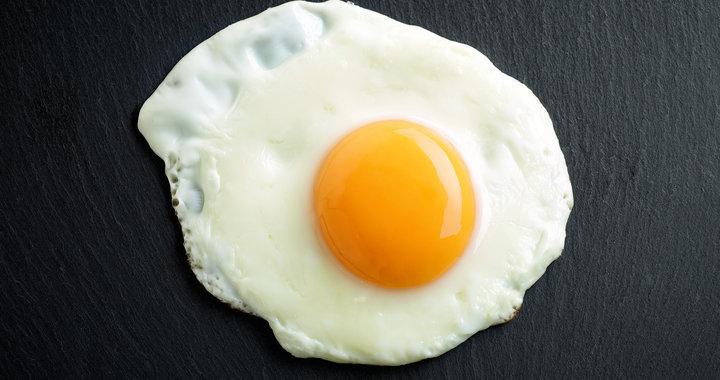 yumurta vücut gelişimi