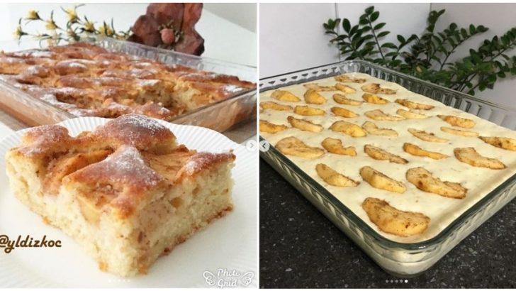 Fındıklı Elmalı Kek Tarifi
